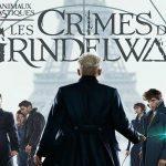 Avis : Les Animaux Fantastiques, les crimes de Grindelwald